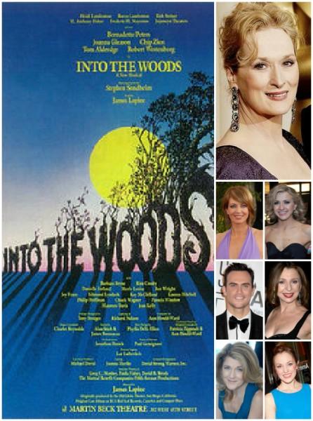 Анна Кендрик проходила прослушивание в фильм «Дальше в лес»